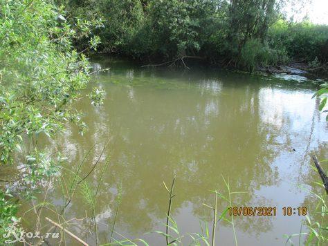 Место для ловли на поплавочную удочку на речке