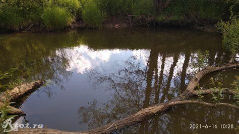 Второе место для ловли на поплавочку на реке
