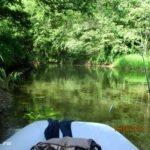 Ловля щуки спиннингом китайскими воблерами на малой реке 15 июня 2021 года