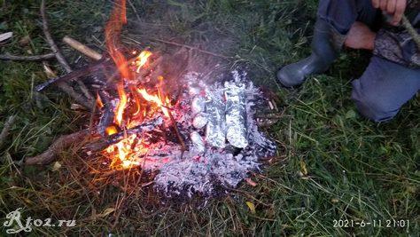 Окуни и картошка в фольге на углях